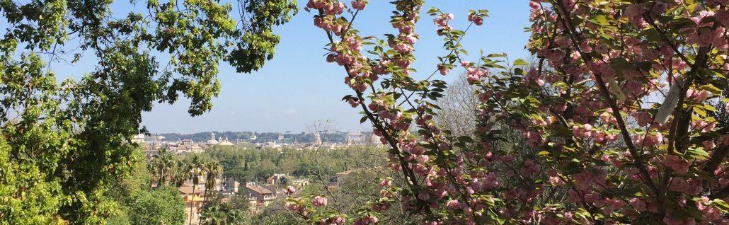Vista Roma tra i Sakura al Giardino Giapponese dell'Orto Botanico
