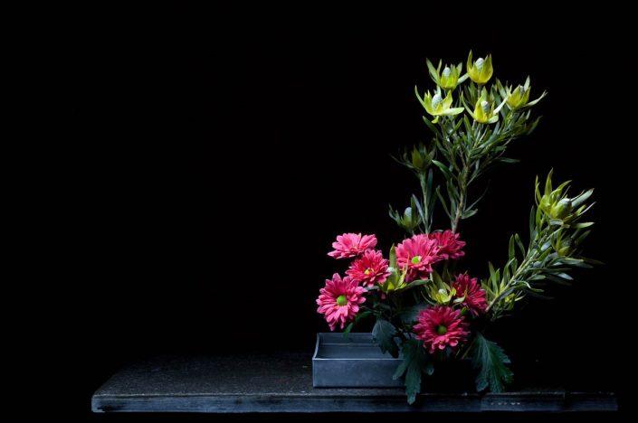 Sogetsu Ikebana Style Base Vertical Moribana